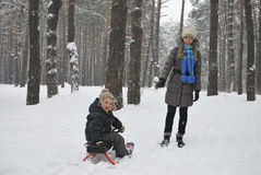 Winter mother carries son on a sledge in the snowy woods royalty free stock photo