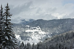 Winter mountain Royalty Free Stock Photos
