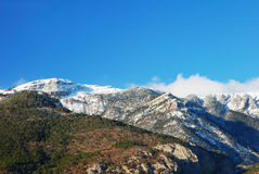Winter mountain Royalty Free Stock Photos