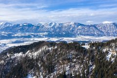 Winter mountain country panorama with forest and valley.  royalty free stock image