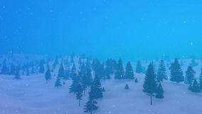 Winter mountain fir forest in bad weather 4K stock footage