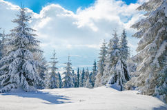 Winter mountain on forest  and cloudy sky, Poland Stock Photos