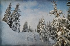 Winter in the mountain forest Royalty Free Stock Photos