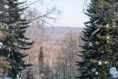 Winter mountain in the forest. View from above. Winter landscape. Winter in Siberia. Coniferous trees along the road royalty free stock image