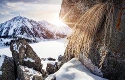 Winter Mountain Lake Royalty Free Stock Photo