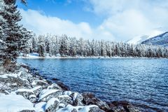 Winter mountain lake with snow-covered pine trees on the shore. Frosty weather in the Altai mountains, fog over the winter lake.  A number of snow-covered Stock Photo