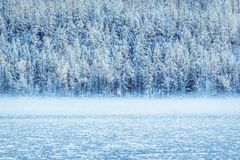 Winter mountain lake with snow-covered pine trees on the shore. Frosty weather, fog over the winter lake, a sharp decrease in temperature. A number of snow Royalty Free Stock Image