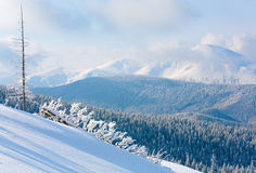 Winter mountain landscape Stock Photography