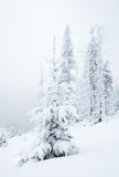 Winter mountain landscape Royalty Free Stock Photography