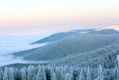 Winter mountain landscape Royalty Free Stock Photo