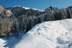 Winter mountain landscape Royalty Free Stock Image