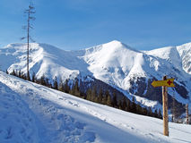 Winter mountain landscape. Landscape in mountains, track and direction sign Stock Image