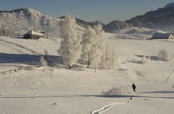 Winter mountain  Landscape Stock Images