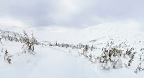 Winter mountain landscape in the Carpathians royalty free stock image