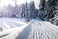 Winter mountain landscape with cross country skiing trails stock photo