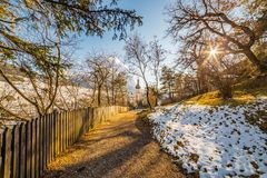 Dirt road in snowy forest Stock Images