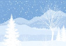 Winter mountain landscape with fir trees. Winter mountain Christmas landscape with fir trees and snow, white and blue silhouettes. Vector Stock Image