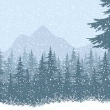 Winter mountain landscape with fir trees. And snow. Eps10, contains transparencies. Vector Stock Photo