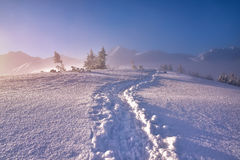 Winter mountain landscape with fotpath in the snowy morning Royalty Free Stock Photos