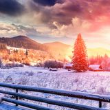 Winter mountain landscape. frosty sunny morning in the mountain village. With overcast sky on the background. pine tree under sunlight on the hill. christmas Stock Images