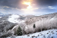 Winter mountain landscape. A winter landscape from the mountains of Romania. Some snowy forests and also some meadows can be seen Royalty Free Stock Photography