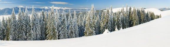 Winter mountain landscape (panorama) Stock Image