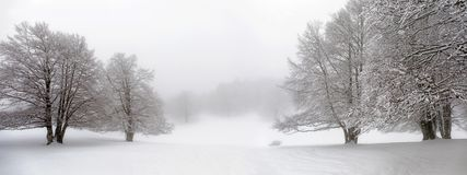 Winter mountain landscape, path and trees covered with snow. Hill and trees covered with snow, in the background you can see the snow-covered forest. Daytime Royalty Free Stock Photo