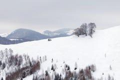 Winter mountain landscape. Winter landscape at Rasinari - Paltinis, Sibiu Royalty Free Stock Photo