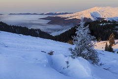 Winter mountain landscape with snow Stock Images