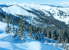 Winter mountain landscape Stock Photos