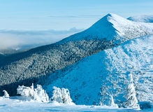 Winter mountain landscape with snowy trees royalty free stock photo