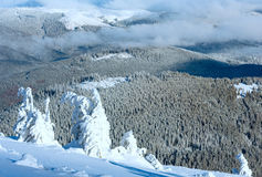 Winter mountain landscape with snowy trees Stock Photography