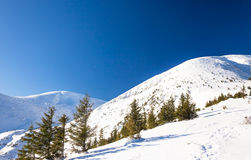 Winter mountain landscape at sunny day. Beautiful winter nature at sunny day in mountains Stock Image