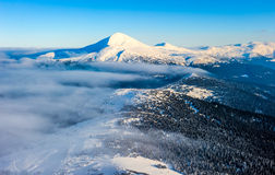 Winter mountain landscape with track road. Ukraine, Carpathians Royalty Free Stock Images