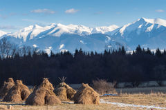Winter mountain landscape. View from  valley to  snowy peaks mou Royalty Free Stock Photos