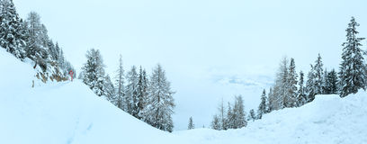 Winter mountain misty panorama. Royalty Free Stock Photos