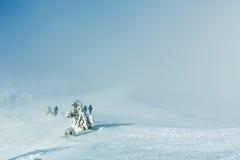 Winter mountain misty view. Stock Photos