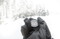 Winter mountain nordic walking accesories Stock Photography