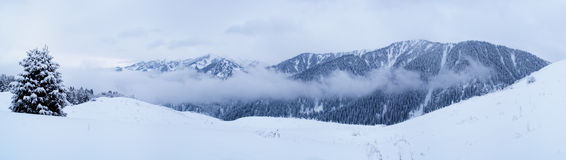 Winter mountain panorama Royalty Free Stock Image