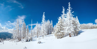 Winter mountain panorama Stock Image