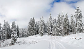 Winter mountain panorama Stock Images