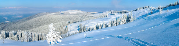 Winter mountain panorama landscape Stock Photos
