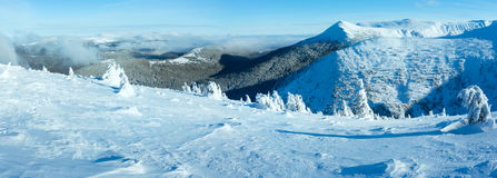 Winter mountain panorama with snowy trees (Carpathian, Ukraine) Stock Photos
