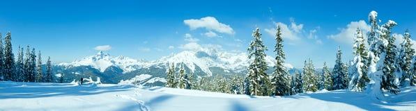 Winter mountain panorama with snowy trees (Filzmoos, Austria) stock photography