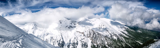 Winter mountain panorama with snowy trees on slope Stock Photos