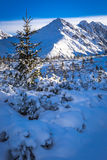 Winter mountain peak on a sunny day Stock Photos