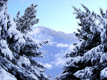 Winter in mountain stock photo