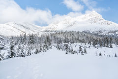 Winter mountain range panorama. Winter mountain range panoramic and snow-covered forest. Photo is from Banff National Park in Alberta in Canada on the way to Royalty Free Stock Photo