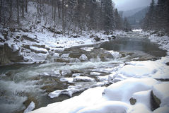 Winter mountain river Stock Photography
