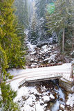 Winter mountain river bridge Royalty Free Stock Photography